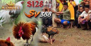 Daftar S128 Online